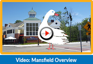 top daycare in mansfield, ct