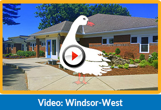 best preschool and child care in windsor, ct