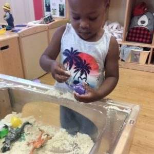 Helping Develop Your Child's Sensory and Motor Skills